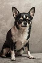 The Charming Chihuahua Journal: 150 Page Lined Notebook/Diary