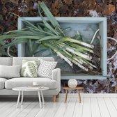 Fotobehang vinyl - Prei in een houten kist met bladeren op de achtergrond breedte 375 cm x hoogte 300 cm - Foto print op behang (in 7 formaten beschikbaar)