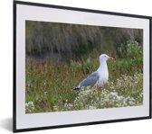 Foto in lijst - Een Zilvermeeuw die in het gras zit fotolijst zwart met witte passe-partout klein 40x30 cm - Poster in lijst (Wanddecoratie woonkamer / slaapkamer)