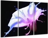 Glasschilderij Bloem | Paars, Blauw, Zwart | 120x80cm 3Luik | Foto print op Glas |  F003524