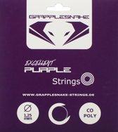 Grapplesnake Excellent Purple Set Tennissnaar