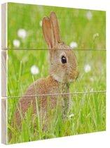 Haas in het gras afdruk Hout 80x60 cm - Foto print op Hout (Wanddecoratie)