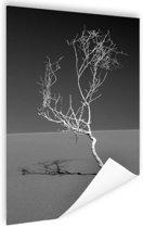 Kunst van de natuur Poster 120x180 cm - Foto print op Poster (wanddecoratie) XXL / Groot formaat!