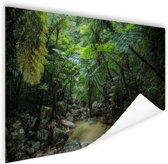 Riviertje in tropische jungle Poster 180x120 cm - Foto print op Poster (wanddecoratie woonkamer / slaapkamer) XXL / Groot formaat!