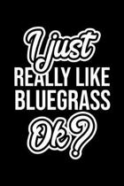 I Just Really Like Bluegrass Ok?: Christmas Gift for Bluegrass lover - Funny Bluegrass Journal - Nice 2019 Christmas Present for Bluegrass - 6x9inch 1