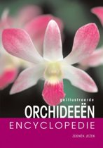 Geillustreerde orchideeen encyclopedie