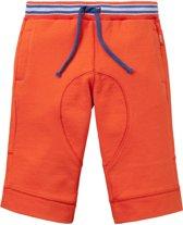 Sweat shorts Halbert voor jongens rood