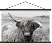 Schoolplaat Highland Cow