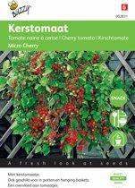 Buzzy® Kerstomaat Micro Cherry
