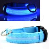 OWO - Honden halsband met led verlichting - Blauw/medium 36-48cm
