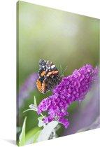 Close up van de vlinderstruik Canvas 20x30 cm - klein - Foto print op Canvas schilderij (Wanddecoratie woonkamer / slaapkamer)