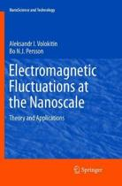 Electromagnetic Fluctuations at the Nanoscale