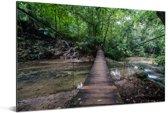 Brug in de jungle bij Palenque in Mexico Aluminium 180x120 cm - Foto print op Aluminium (metaal wanddecoratie) XXL / Groot formaat!