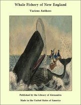 Whale Fishery of New England
