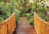 Fotobehang Forest Nature Path Bamboo   M - 104cm x 70.5cm   130g/m2 Vlies