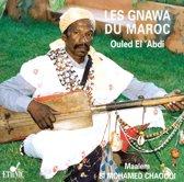 Folklore Aus Marokko