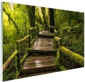 Mooi regenwoud en jungle Glas 30x20 cm - Foto print op Glas (Plexiglas wanddecoratie)