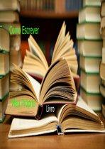 Como Escrever Meu Proprio Livro