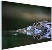 FotoCadeau.nl - Oog van krokodil Glas 90x60 cm - Foto print op Glas (Plexiglas wanddecoratie)