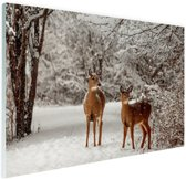 Herten in de sneeuw Glas 60x40 cm - Foto print op Glas (Plexiglas wanddecoratie)
