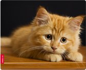 Speedlink SILK muismat Baby Kat