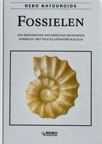 FOSSIELEN-NATUURGIDS