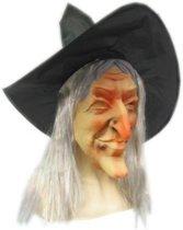 Heksenmasker met hoed en haar