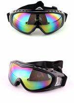 Ski & Snowboard Bril - Volwassenen - Masker - Multicolour - Wintersport