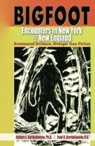 Bigfoot Encounters in New York & New England