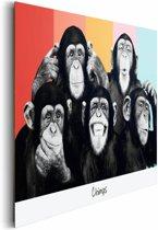 The Chimp compilatie  - Schilderij 90 x 60 cm
