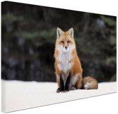 Rode vos in de sneeuw Canvas 80x60 cm - Foto print op Canvas schilderij (Wanddecoratie woonkamer / slaapkamer) / Dieren Canvas Schilderijen