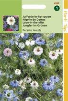 Hortitops Zaden - Nigella Damascena Persian Jewels Gem.