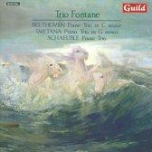 Trio Fontane - Piano Trio By Beethoven, Smetana, S