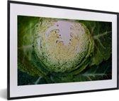 Foto in lijst - Gehalveerde savooiekool fotolijst zwart met witte passe-partout 60x40 cm - Poster in lijst (Wanddecoratie woonkamer / slaapkamer)