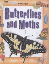 The Secret World Of: Butterflies Paperback