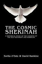 The Cosmic Shekinah