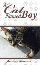 A Cat Named Boy