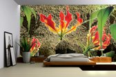 Green   Red Photomural, wallcovering