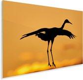 Saruskraan bij zonsondergang Plexiglas 90x60 cm - Foto print op Glas (Plexiglas wanddecoratie)