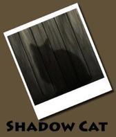 Shadow Cat (Journal / Notebook)