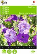 Petunia Raadsheer - Petunia nana compacta - set van 7 stuks