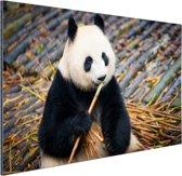 Reuzepanda die bamboe eet Aluminium 90x60 cm - Foto print op Aluminium (metaal wanddecoratie)