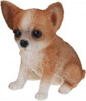 Chihuahua honden beeldje voor binnen 17 cm - dierenbeelden