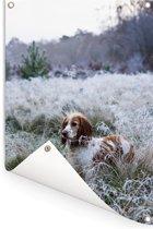 Engelse cockerspaniël in het bevroren gras Tuinposter 60x90 cm - Tuindoek / Buitencanvas / Schilderijen voor buiten (tuin decoratie)