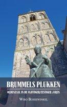 BRUMMELS PLUKKEN - Oldenzaal in de vijftiger/zestiger jaren