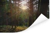 Doorbrekende zon in het Nationaal park Sierra de Guadarrama in Spanje Poster 90x60 cm - Foto print op Poster (wanddecoratie woonkamer / slaapkamer)
