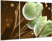 Glasschilderij Tulp | Groen, Bruin | 120x80cm 3Luik | Foto print op Glas |  F004982