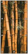Tuinposter –Bamboe– 100x200cm Foto op Tuinposter (wanddecoratie voor buiten en binnen)