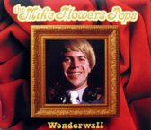 Wonderwall Oasis Cover