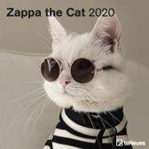Zappa the Cat 30 X 30 Cm Grid Calendar 2
